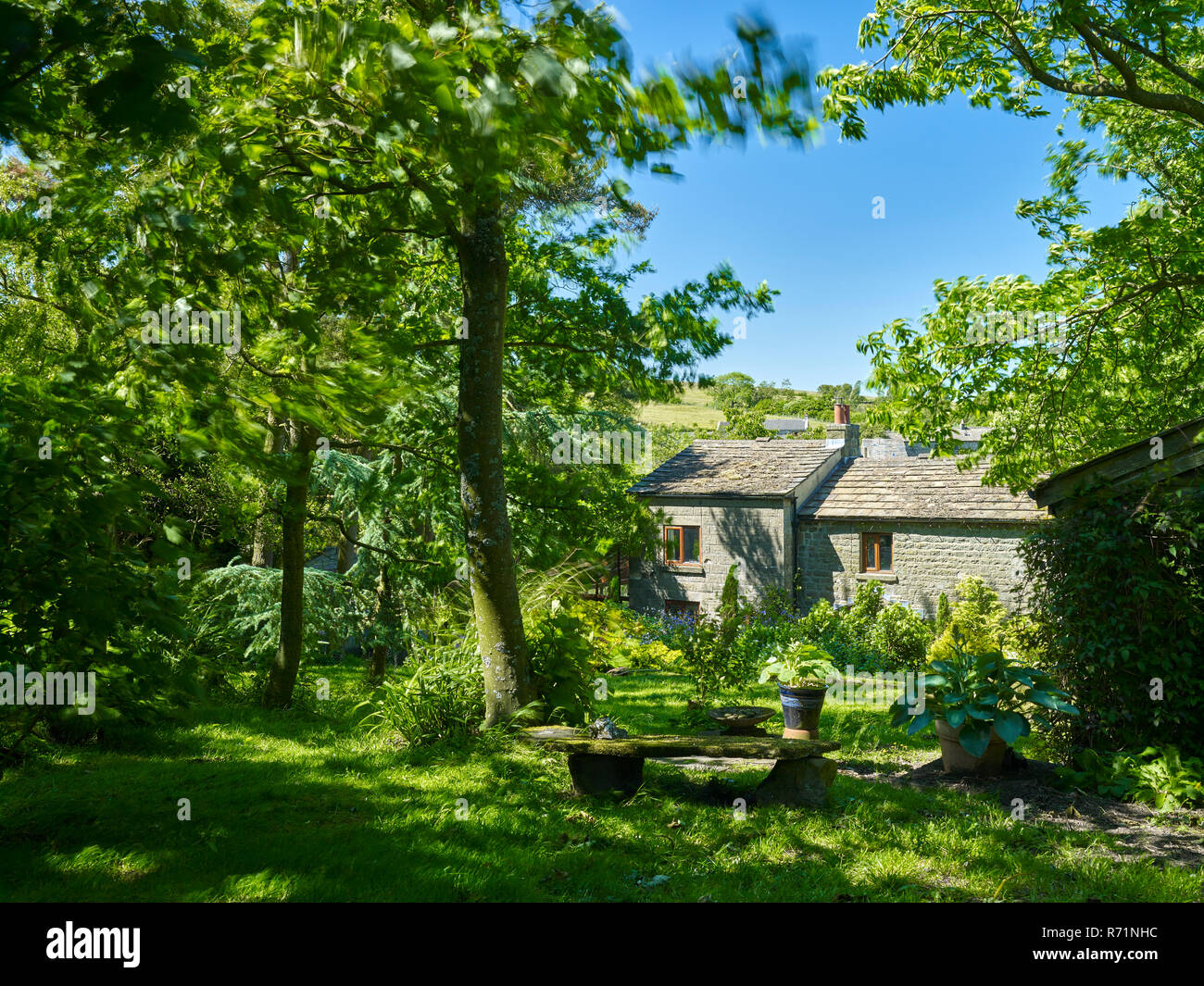 Bewerley, Nidderdale, North Yorkshire, UK. 17th June 2017. Traditional Yorkshire Dales smallholding cottage basks in sunshine with cloudless blue sky. - Stock Image
