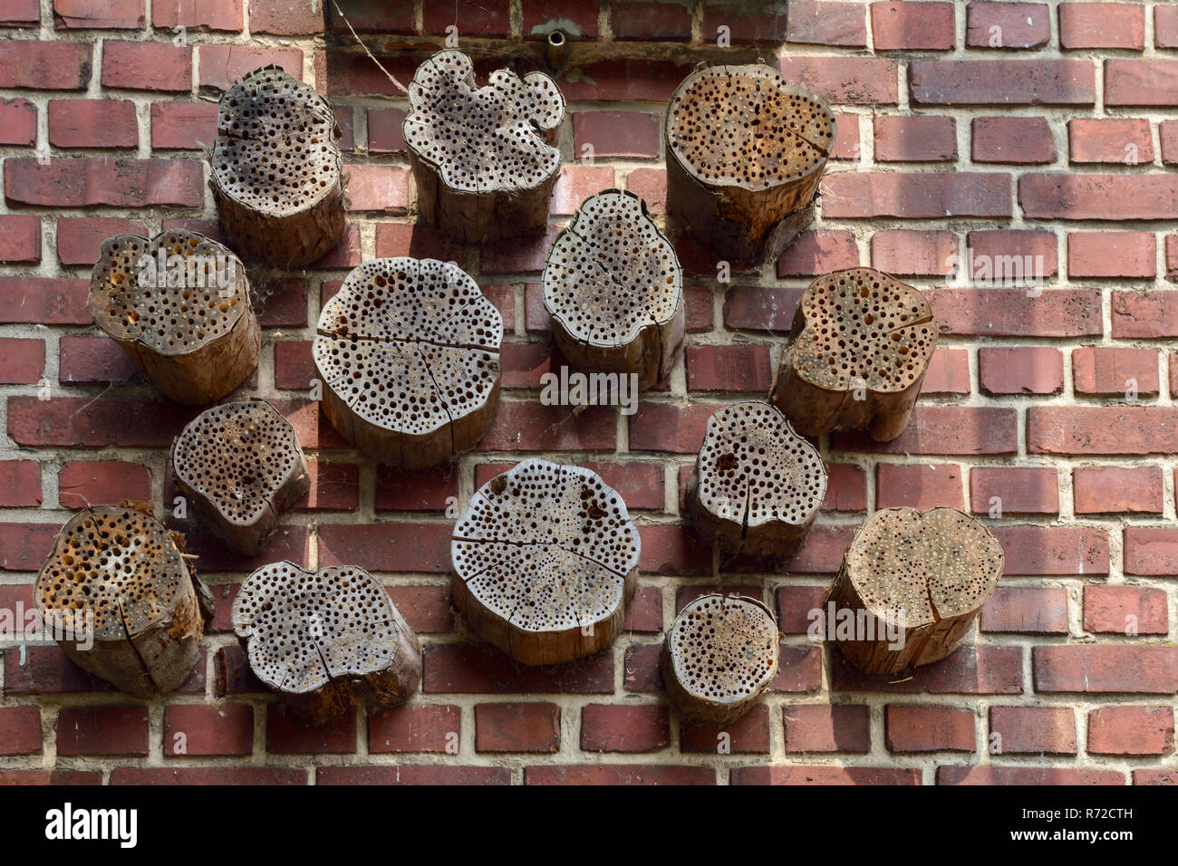 Insect boxes, insect asylum, insectshotels, artificial help for nesting and overwintering, Germany, Europe. - Stock Image