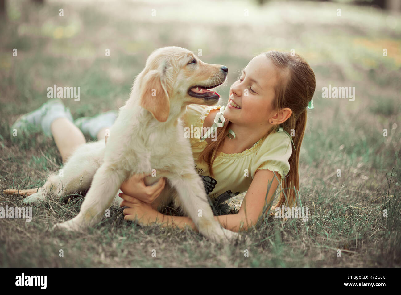 Retriever pup Lovely scene cute young teen girl enjoying