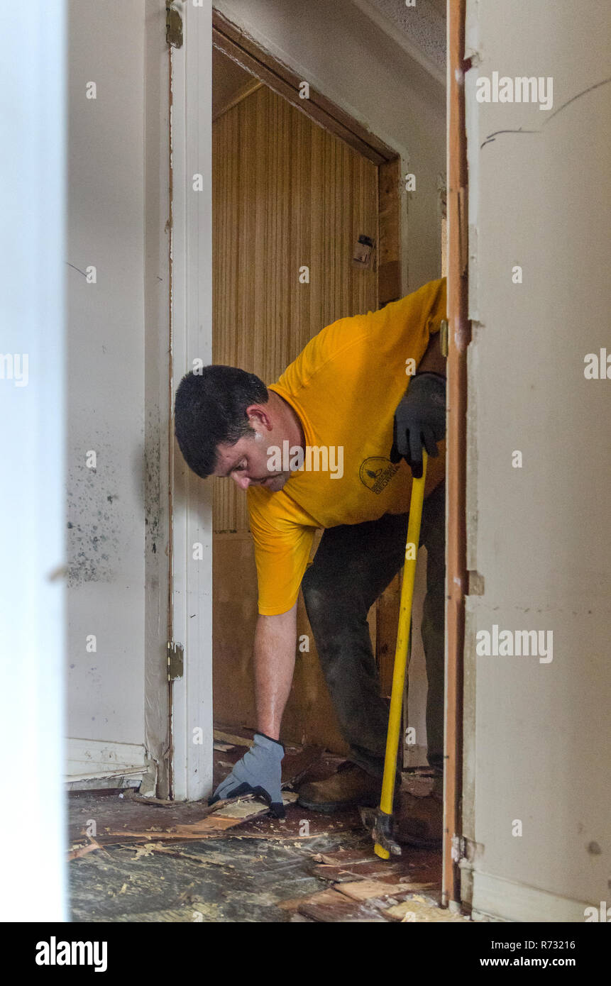 A Southern Baptist Disaster Relief volunteer tears out a flood-damaged floor in Denham Springs, Louisiana. - Stock Image