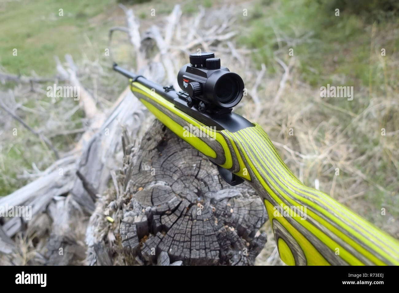 22 Rifle Stock Photos & 22 Rifle Stock Images - Alamy