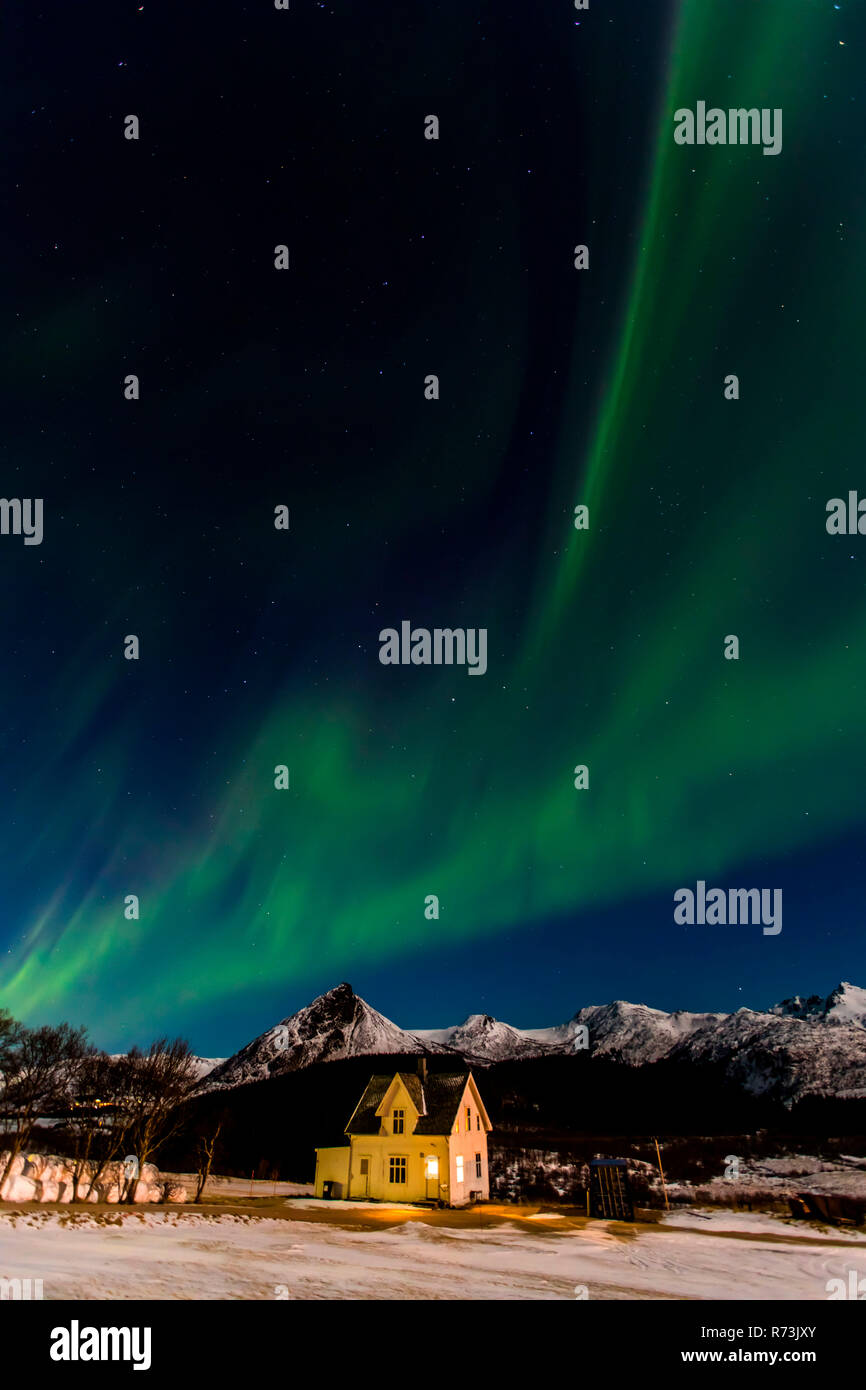 Aurora Borealis, Borg, Lofoten Islands, Nordland, Norway - Stock Image