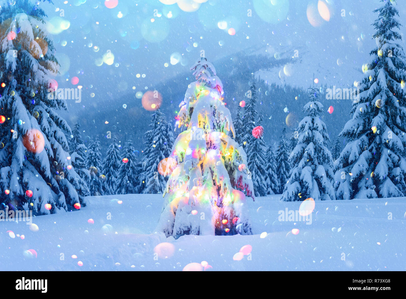 Mountain Christmas Tree.Holiday Landscape With Christmas Tree Snow And Lights In