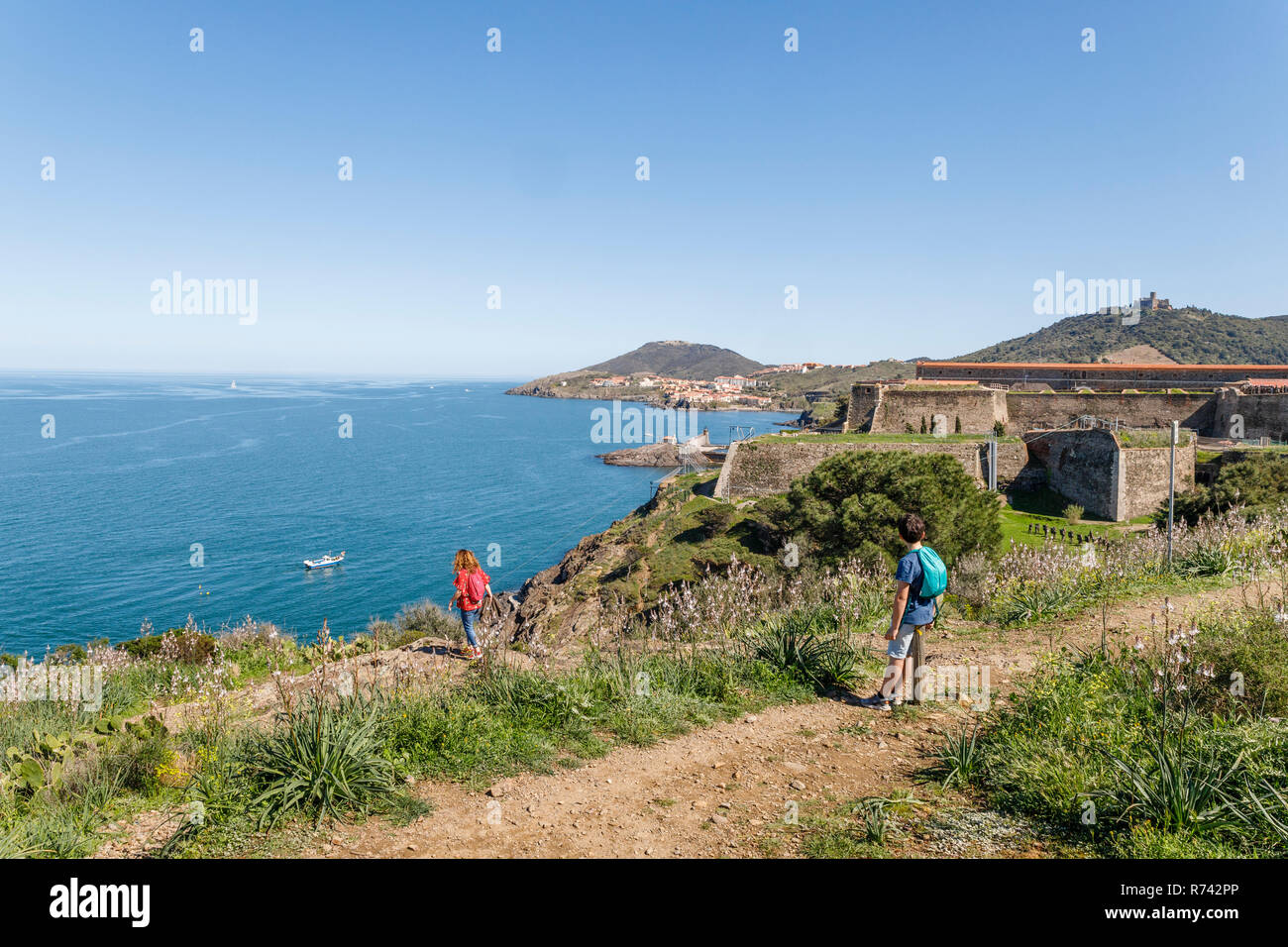 France, Pyrenees Orientales, Cote Vermeille, Collioure, littoral path, the Fort Miradou army property and Port Vendres in the background // France, Py - Stock Image