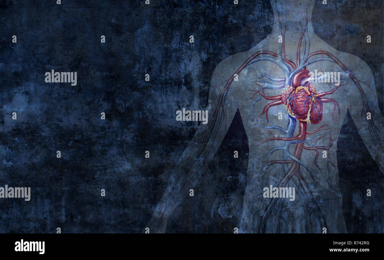 Human circulatory system and cardiology  arterial and venous body function abstract background as a human heart function symbol. - Stock Image