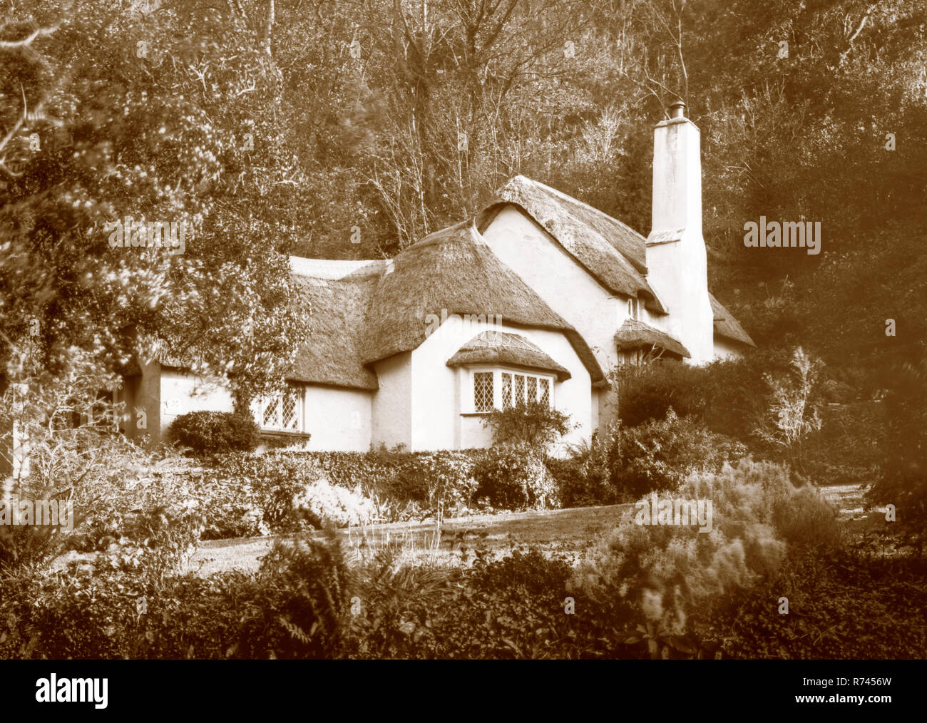 A sepia toned photograph taken on a paper negative in a 7 x 5 inch plate camera in October 2018 of a thatched cottage on Selworthy Green on Exmoor, So - Stock Image
