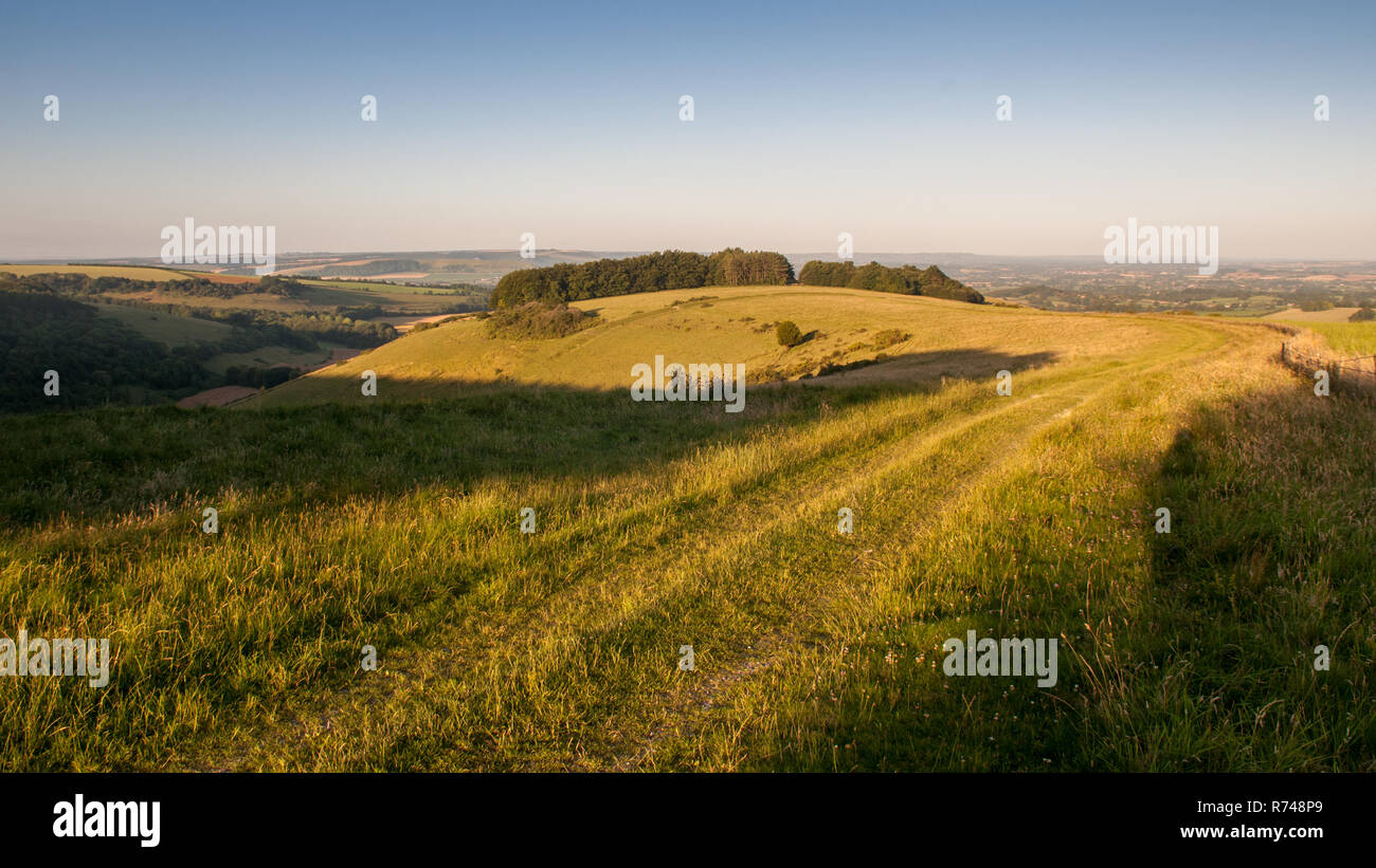 Morning light casts shadows on pasture fields on Fontmell Down hill, above the patchwork farming landscape of the Blackmore Vale in Dorset. - Stock Image