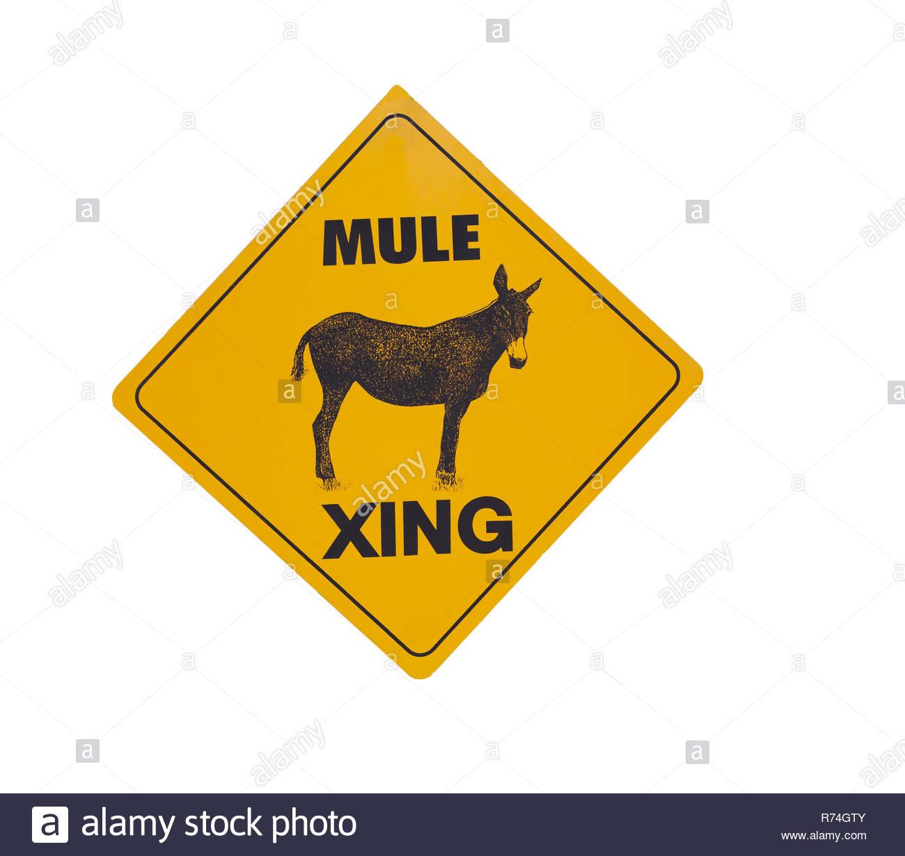 mule crossing road sign - Stock Image