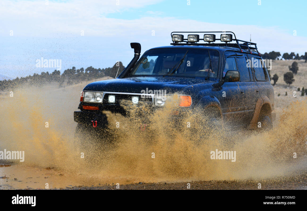 land and mud monster vehicle - Stock Image