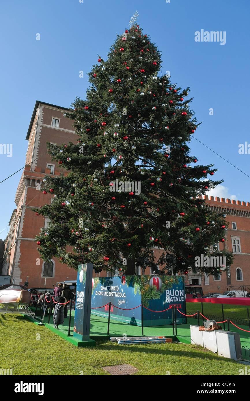 Albero Di Natale Roma 2019.Foto Lapresse Daniele Leone08 12 18 Roma Ita Cronaca Roma Piazza