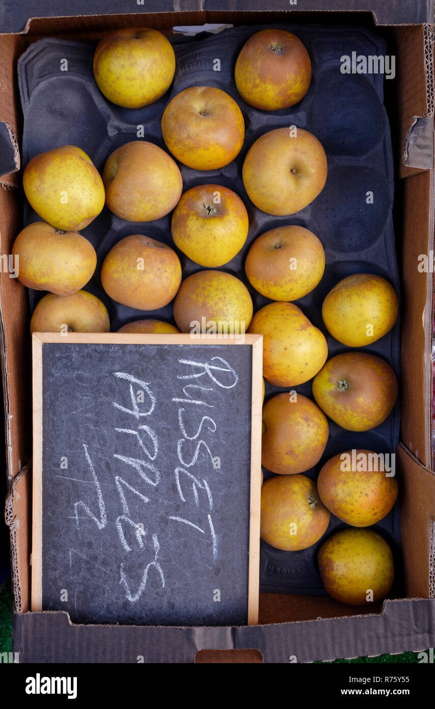 Box of Russet Apples outside fruit shop - Stock Image