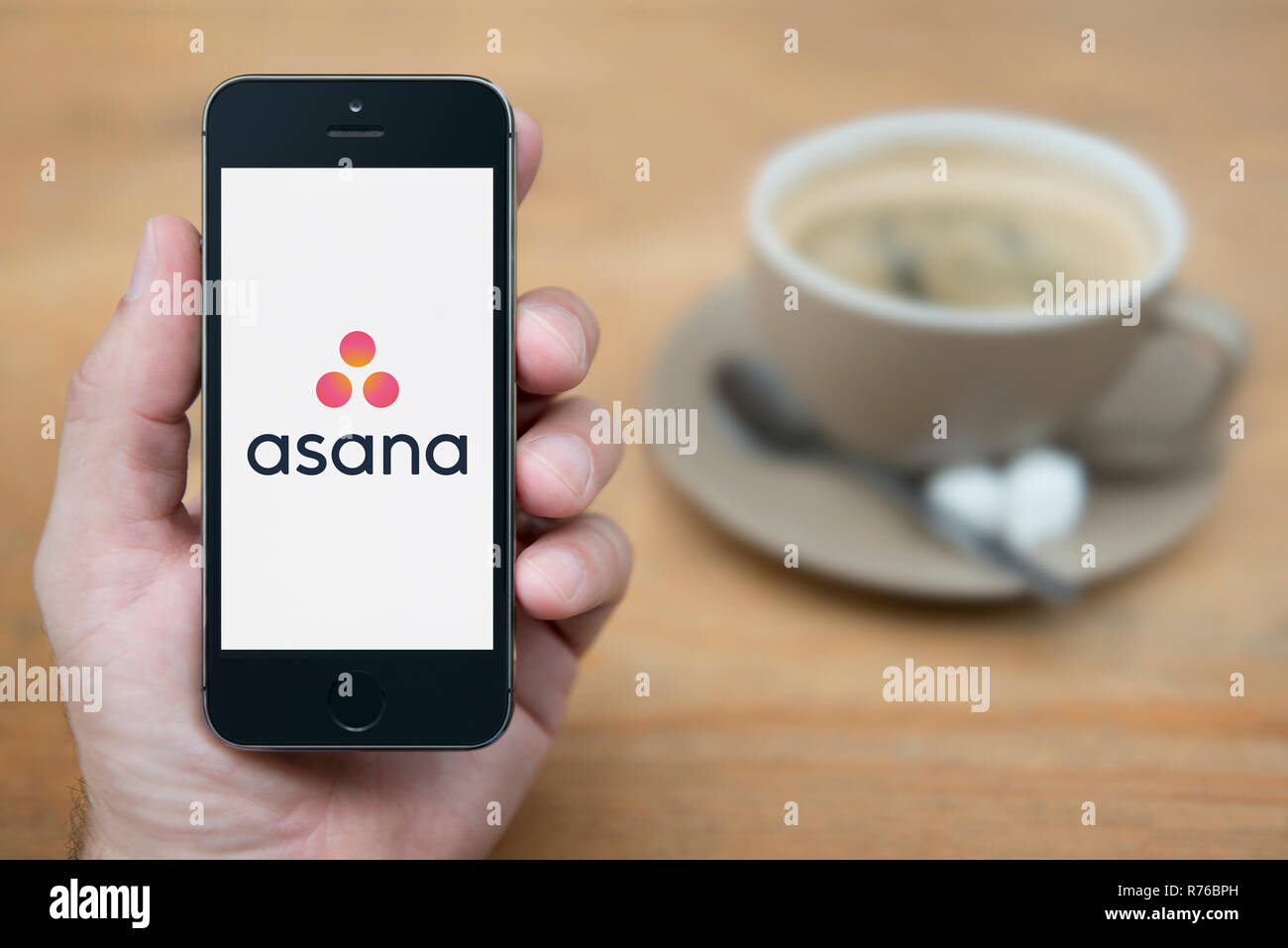 A man looks at his iPhone which displays the Asana logo (Editorial use only). - Stock Image