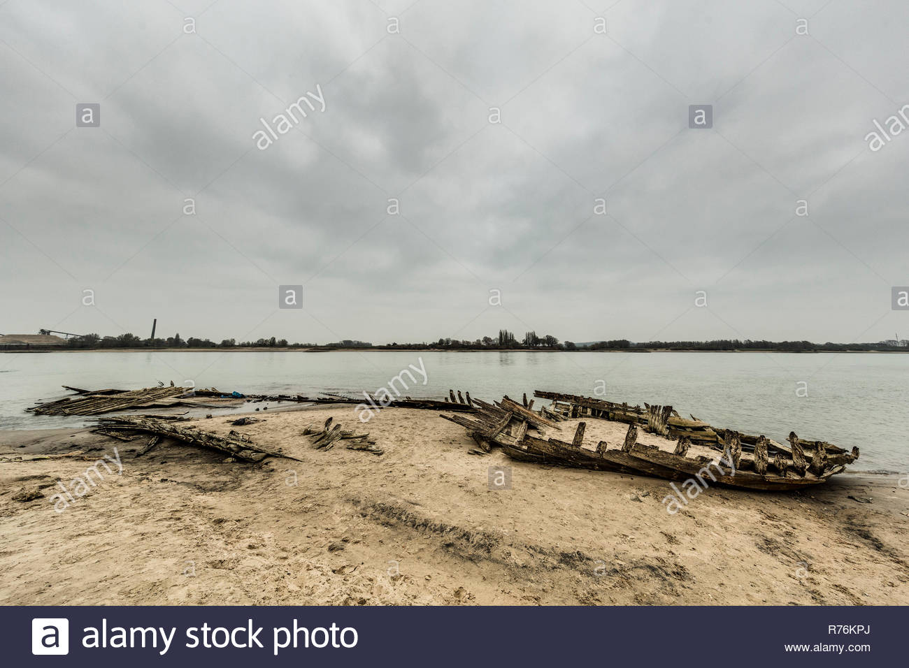 Remains of a shipwreck, visible because of the extreme low tide, on the shores of the Lower Rhine near Kleve, Germany - Stock Image