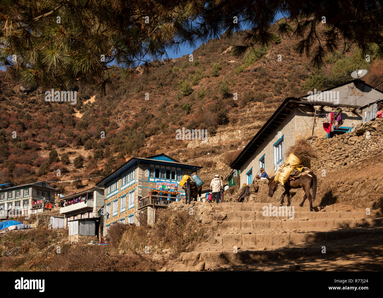 Nepal, Namche Bazar, rocky steps, Cyrus Café and first buildings at southern edge of Namche Baxaar - Stock Image