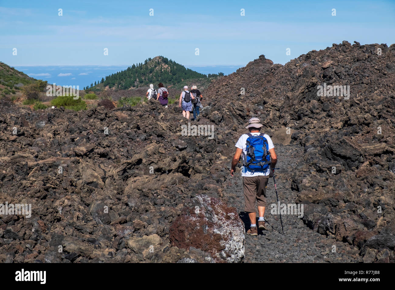 Walking group on a path through the Chinyero lava field, scene of the 1909 eruption on Tenerife, Canary Islands, Spain - Stock Image