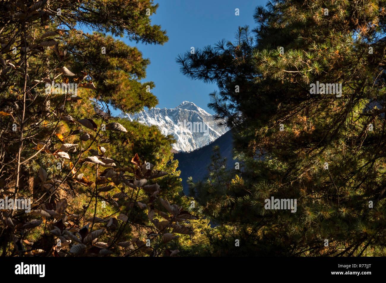 Nepal, Namche Bazar, Sagarmatha National Park, Topdanda viewpoint, distant peak of Mount Everest - Stock Image