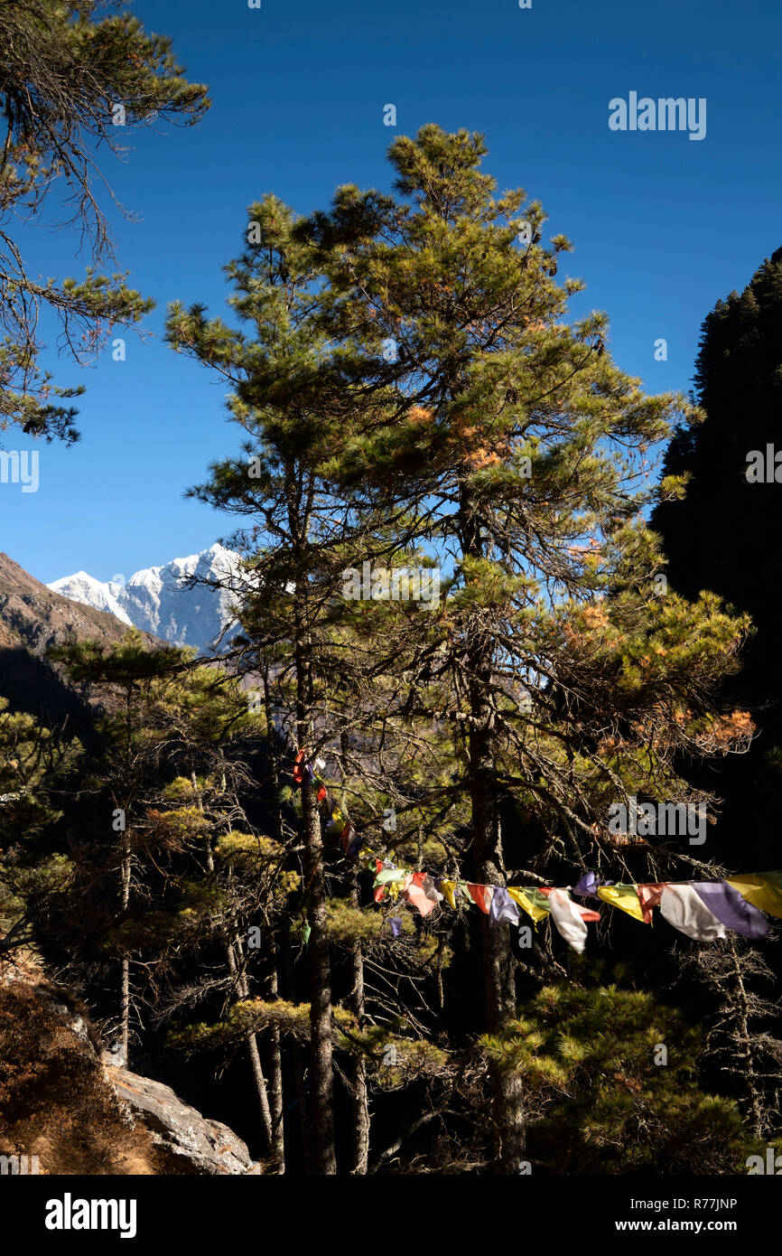 Nepal, Larja Dobhan, distant view of peaks of Mount Everest and Lhotse and Buddhist prayer flags from upper Larja suspension Bridge - Stock Image