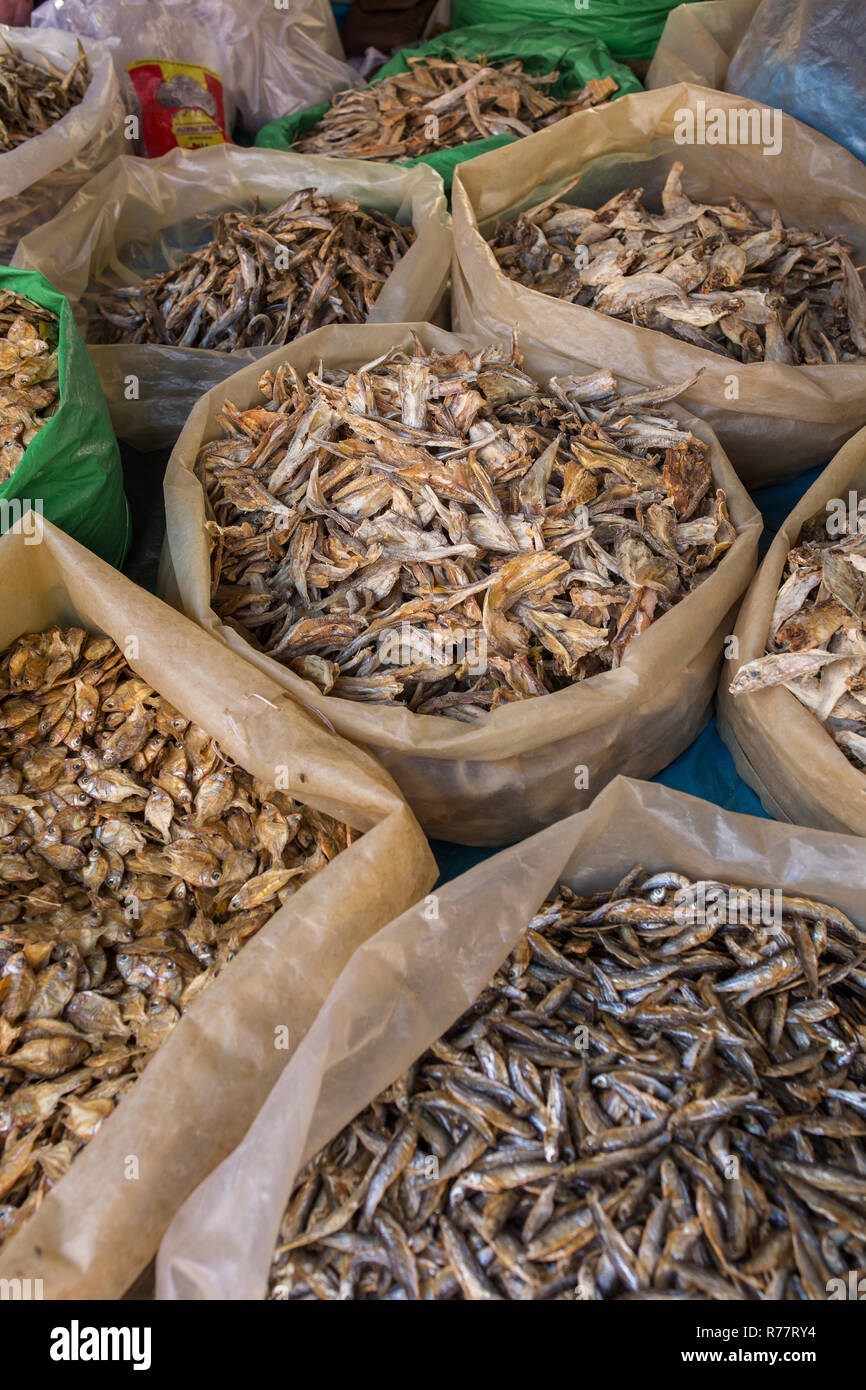 Small dry fish on a stall at the market in Meghalaya state, Northeast India - Stock Image