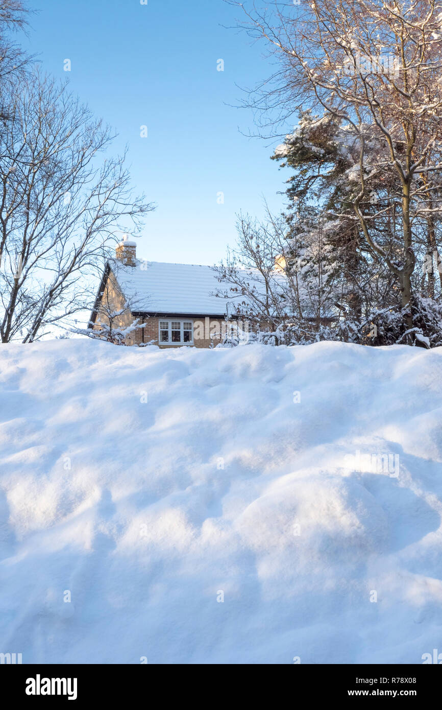 A Modern House Peeping Out From Behind Trees And A Winter Snow Covered Bank In Consett County Durham Uk Stock Photo Alamy