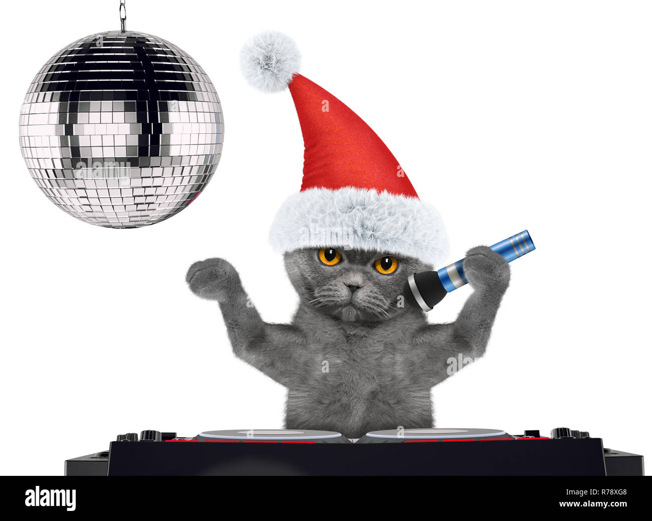 Cute Cat In Christmas Hats Singing With Microphone A Karaoke