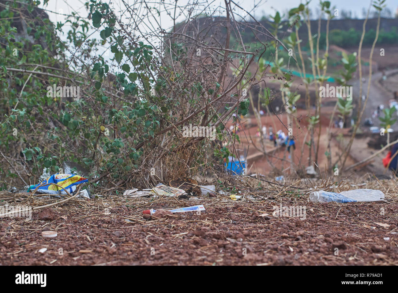 Garbage in some bushes. Stock Photo