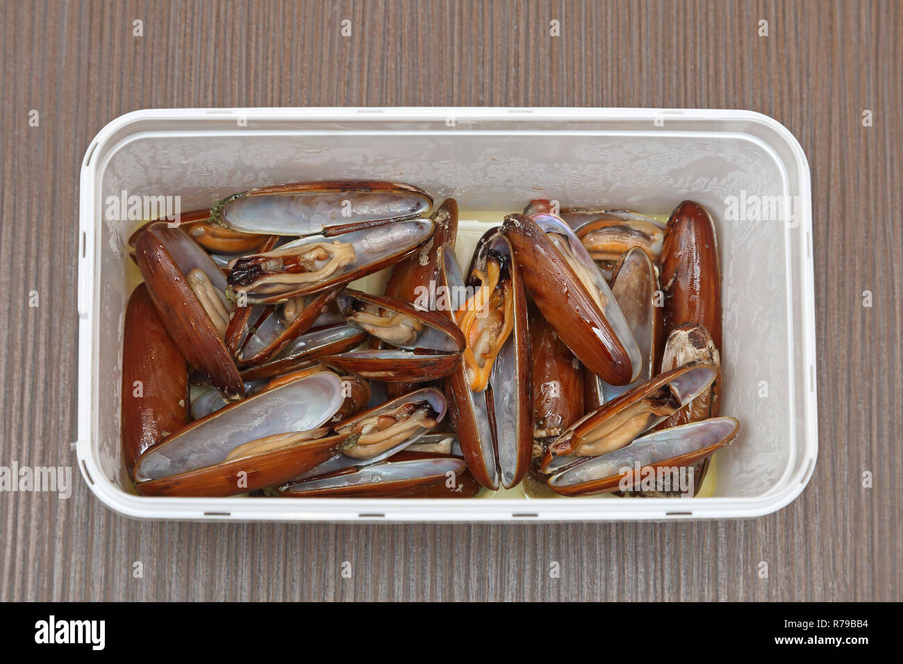 Date Clams - Stock Image