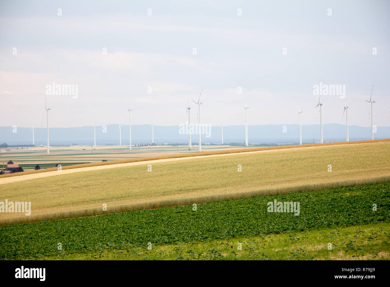 flat farmland landscape with wind wheels and houses in background with cloudy sky in early summer at day Stock Photo