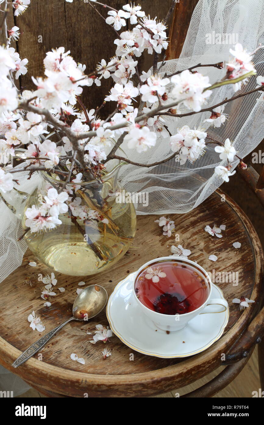 Still life with fruit tea and apricot branch - Stock Image