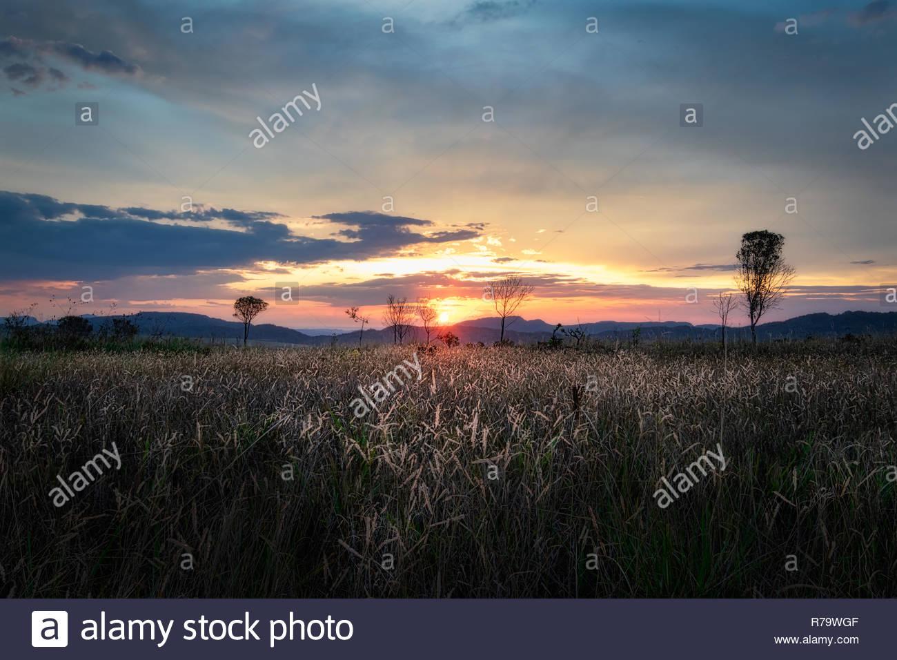 Sunset in the Brazilian savannah, Alto Paraíso de Goiás, Chapada dos Veadeiros, Goiás, Brazil. - Stock Image