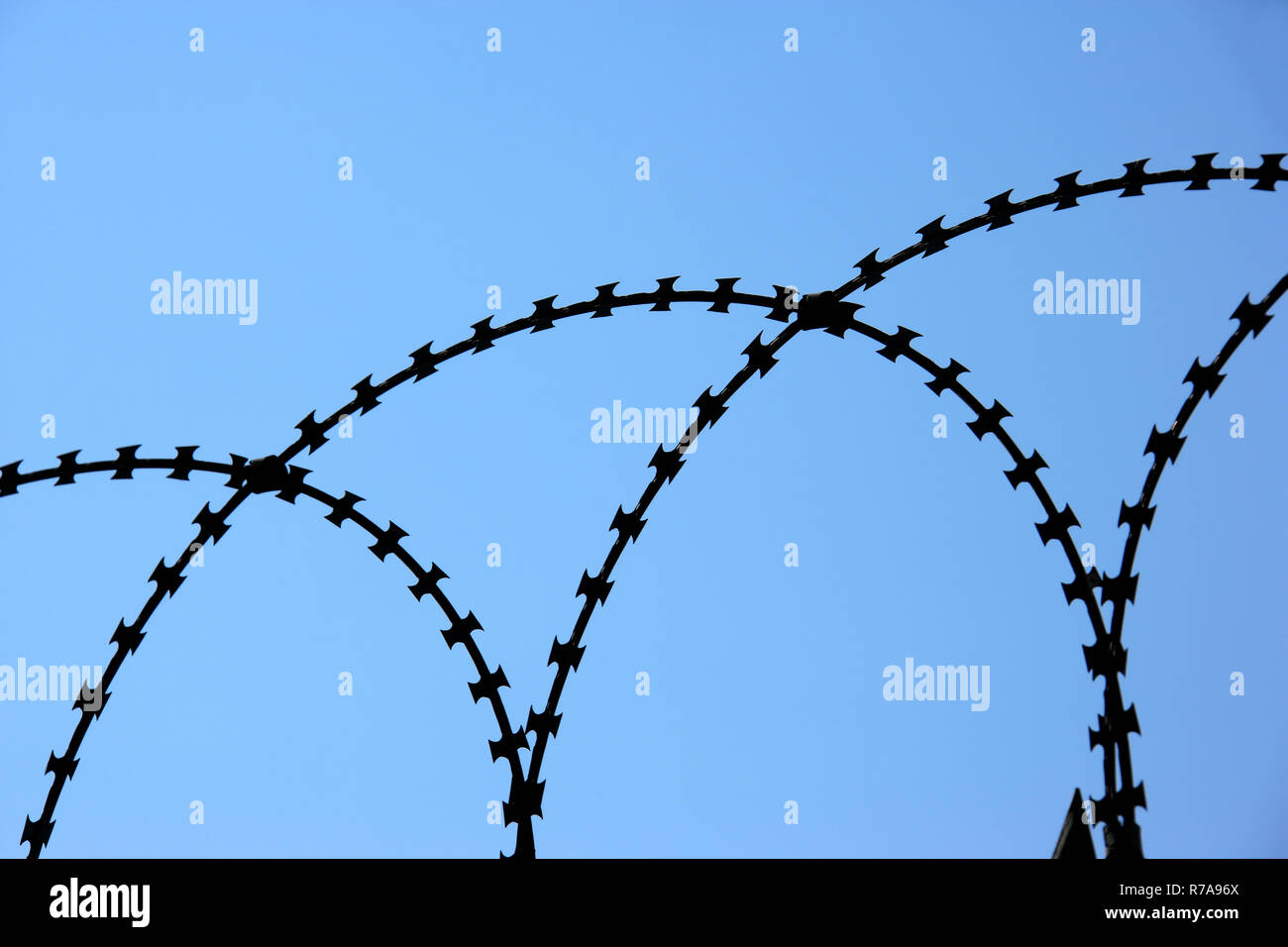 Barbed Wire Barbs Fence Gate Stock Photos & Barbed Wire