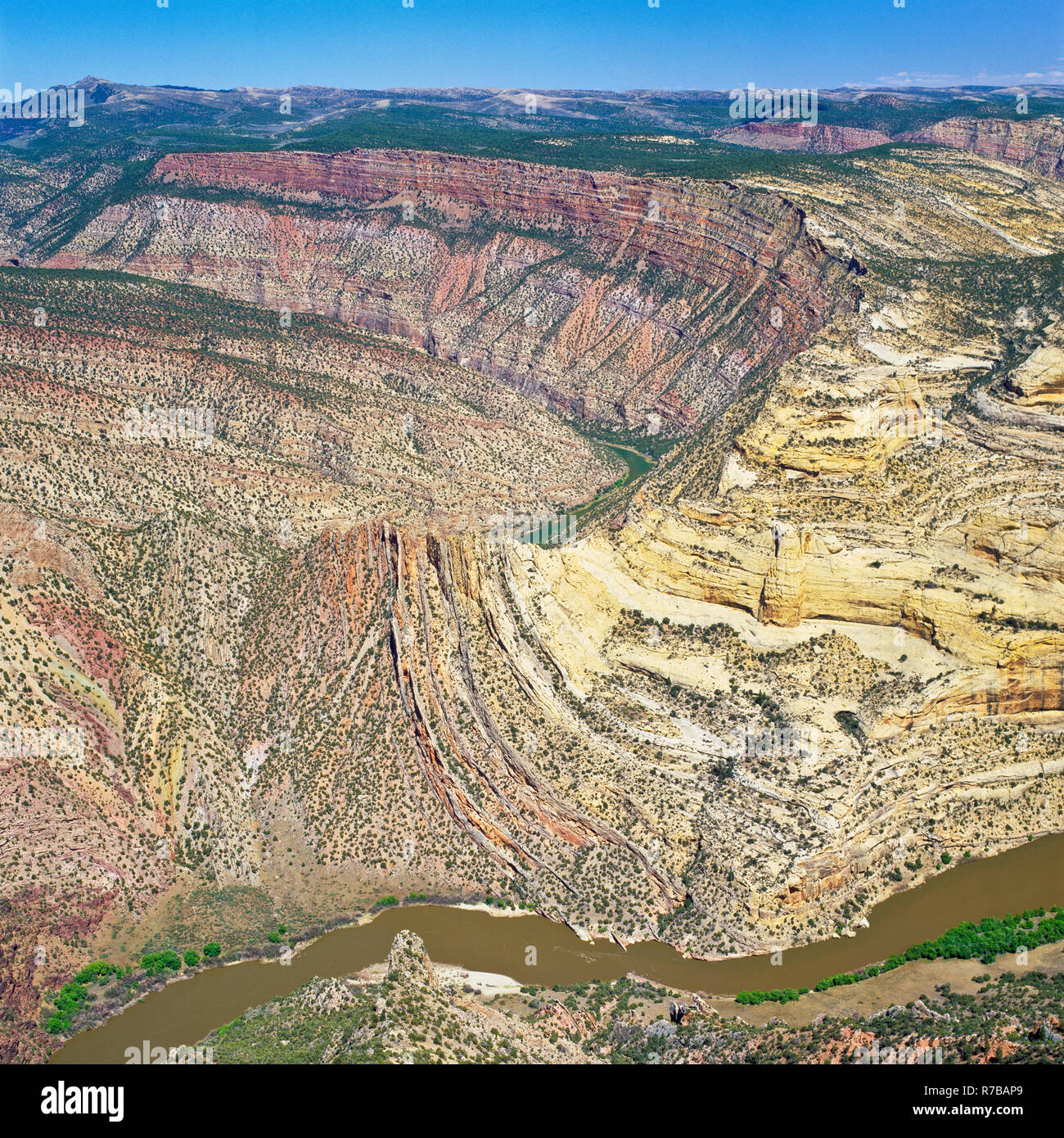 green river canyon viewed from harper's corner in dinosaur national monument, colorado - Stock Image