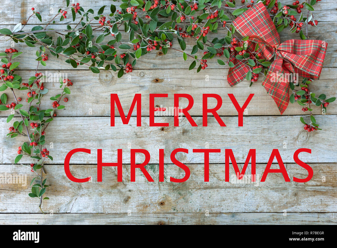 Christmas composition frame with green foliage with berries and a checked pattern red tie on wooden background. For Christmas greetings card. - Stock Image