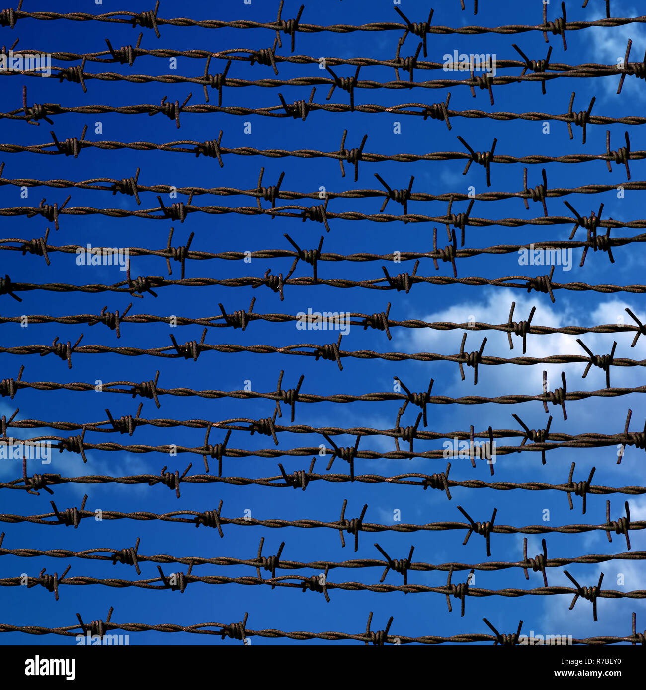 Barbed wire Fence and blue sky - Stock Image