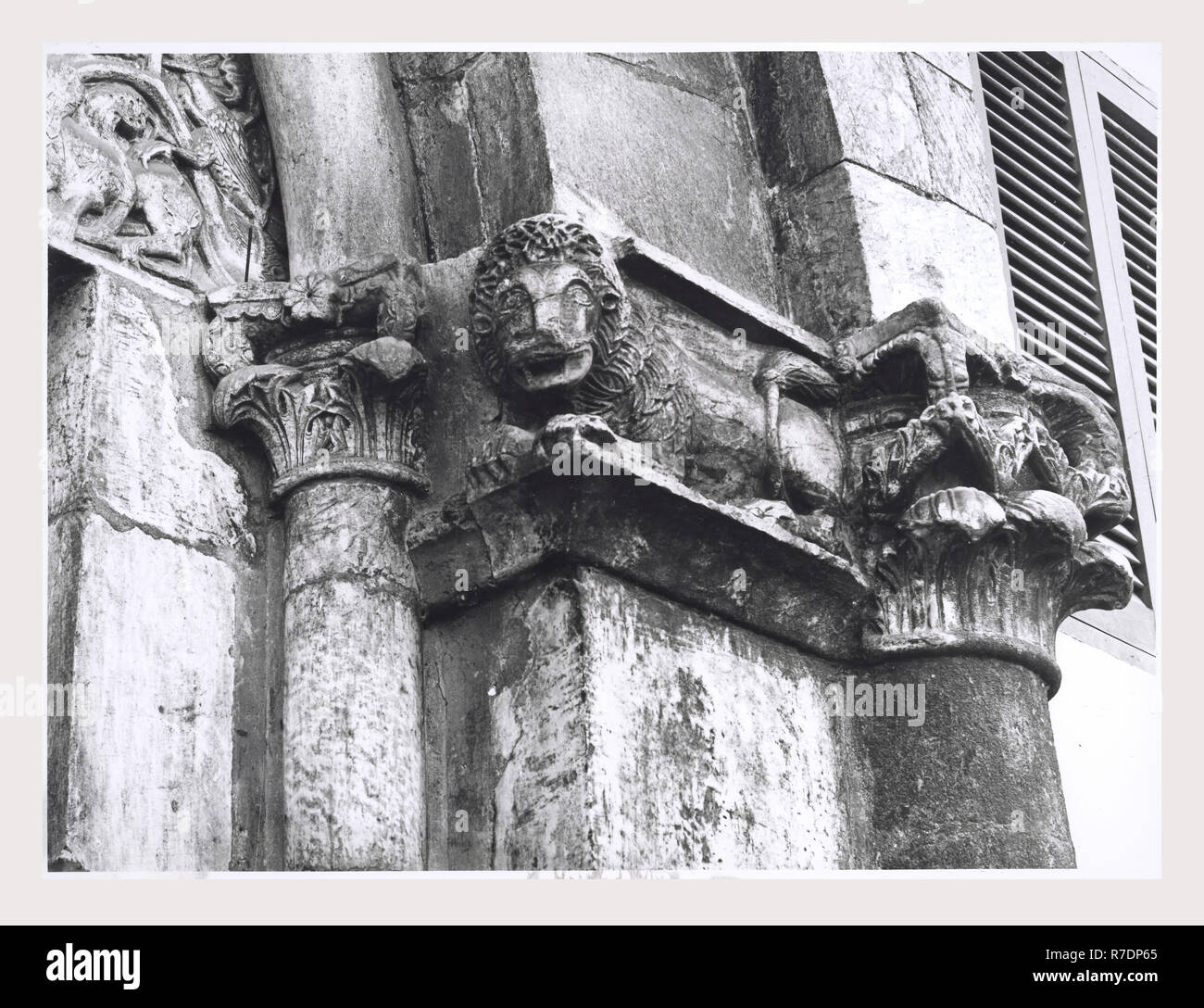 Lazio Viterbo Capranica portale romanico, this is my Italy, the italian country of visual history, Medieval Architecture, architectural sculpture. This portal now a part of the Ospedale Civile dates to the 13th century. The lunette of the portal is adorned with a vine-scroll motif, in which are entwined monstrous half-human/half-animal figures. - Stock Image