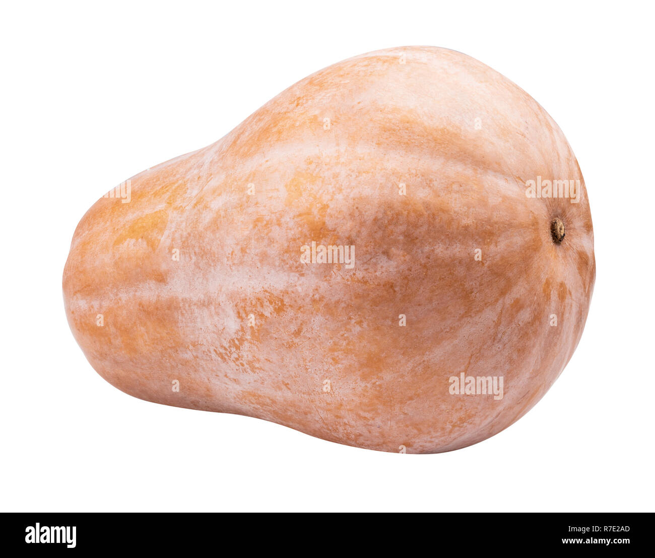Pumpkin isolated on white background. Clipping path - Stock Image