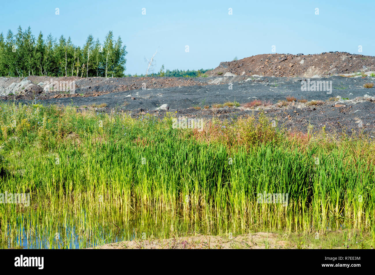 Desert landscape after mining activities. The destruction of forests due to the overburden dump pit. - Stock Image