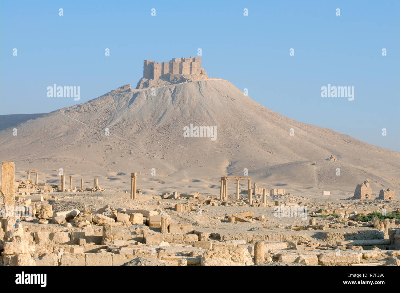 The ruins of the ancient city Palmyra in front of a medieval fortress, Qala'at Ibn Maan or Palmyra Castle or Fakhr-al-Din Stock Photo