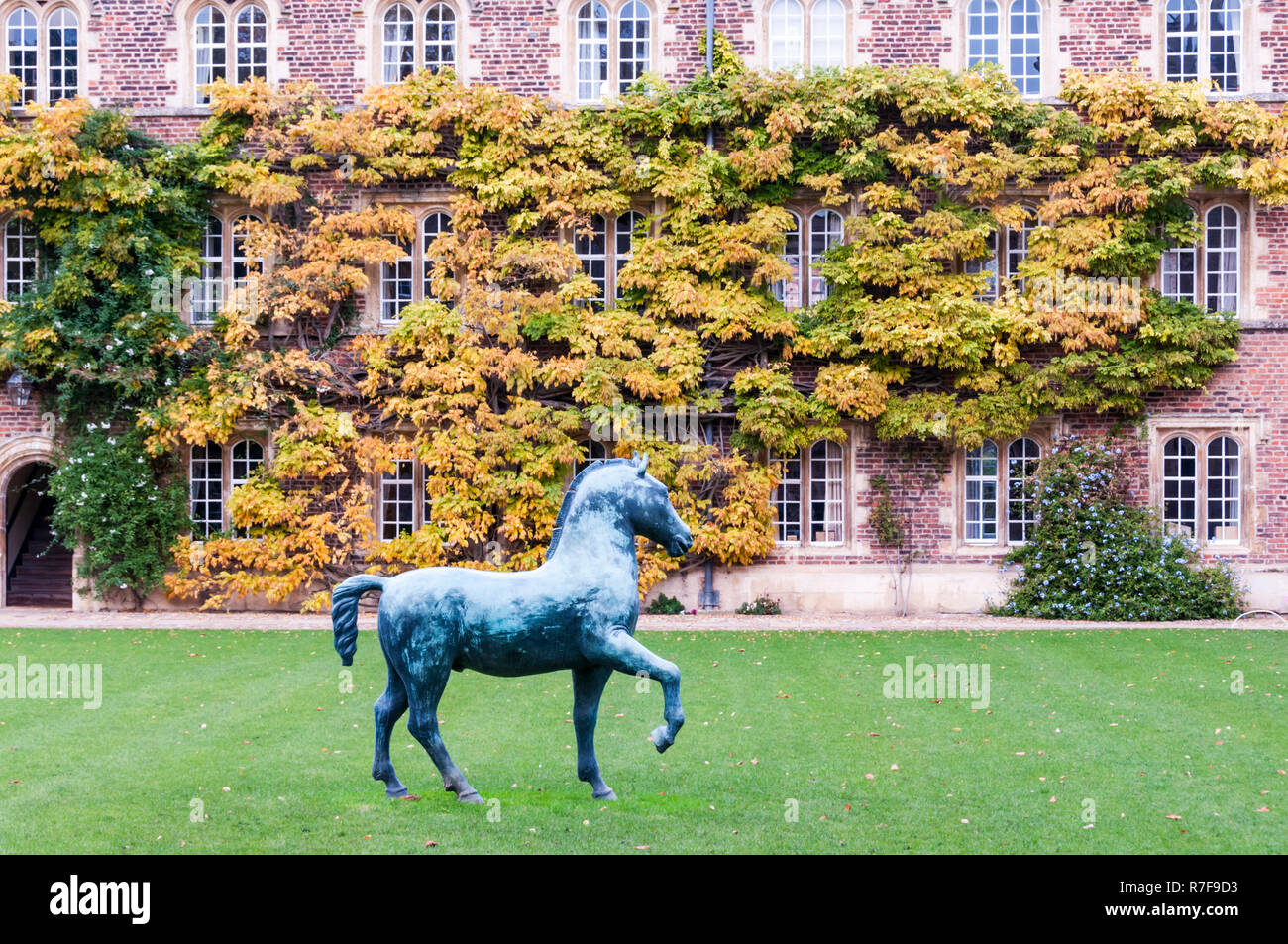 The First Court of Jesus College, Cambridge with Bronze Horse, a large sculpture by Barry Flanagan. Donated to the college in 2009. Stock Photo