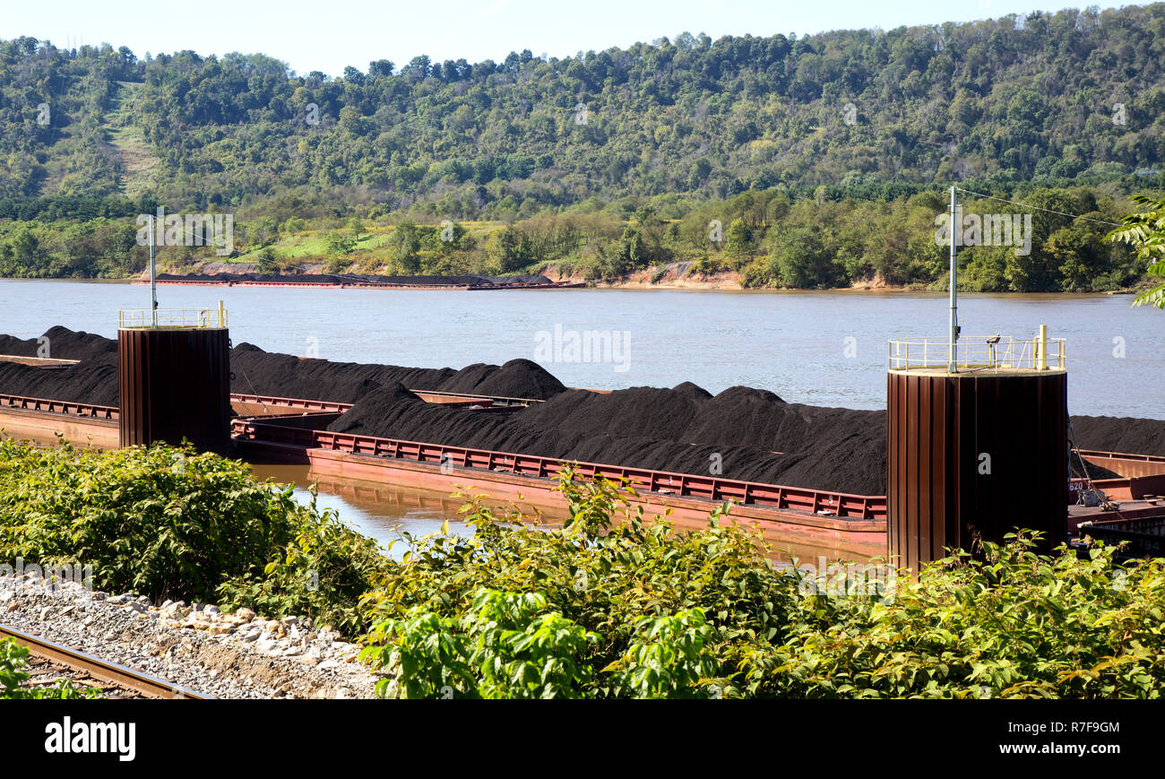 Loaded coal barges awaiting transportation, additional stored loaded barges on the opposite shore state of Ohio, Ohio River, , near Parkersburg, Wood  - Stock Image