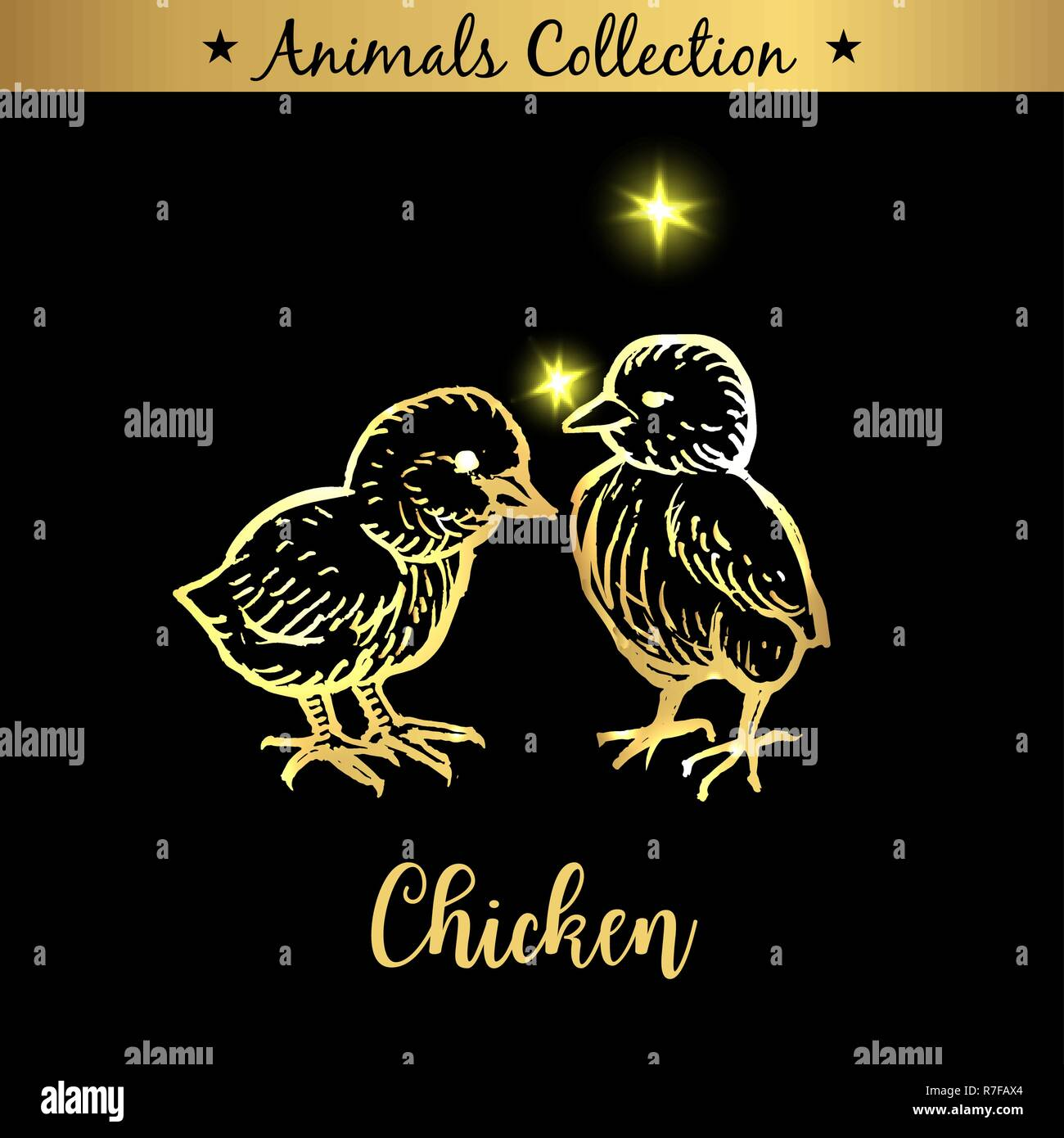 Golden and royal Hand Drawn Emblem of farm Chicken animals. Butchery shop branding, meat products. Butcher market. Gold Outline Sketch and lettering. Contour drawing concept - Stock Vector