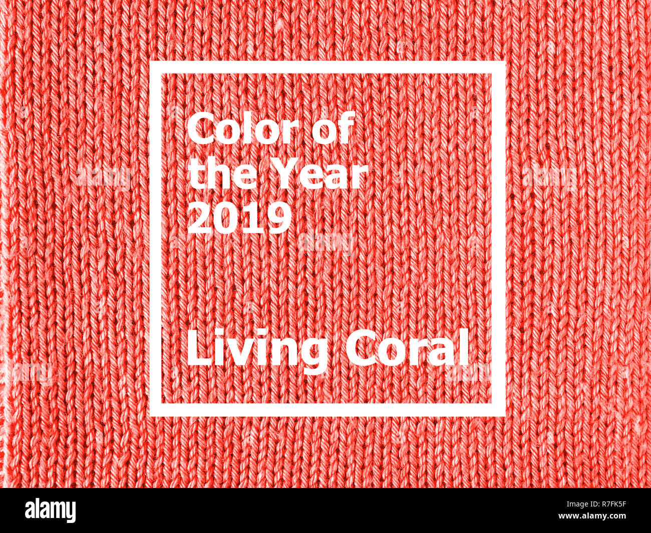 Color of the year 2019  Living Coral. Texture of colored knitted Jersey.  Fashionable pantone color of spring-summer 2019 season. Knitted Living Coral a4aa011d7ce