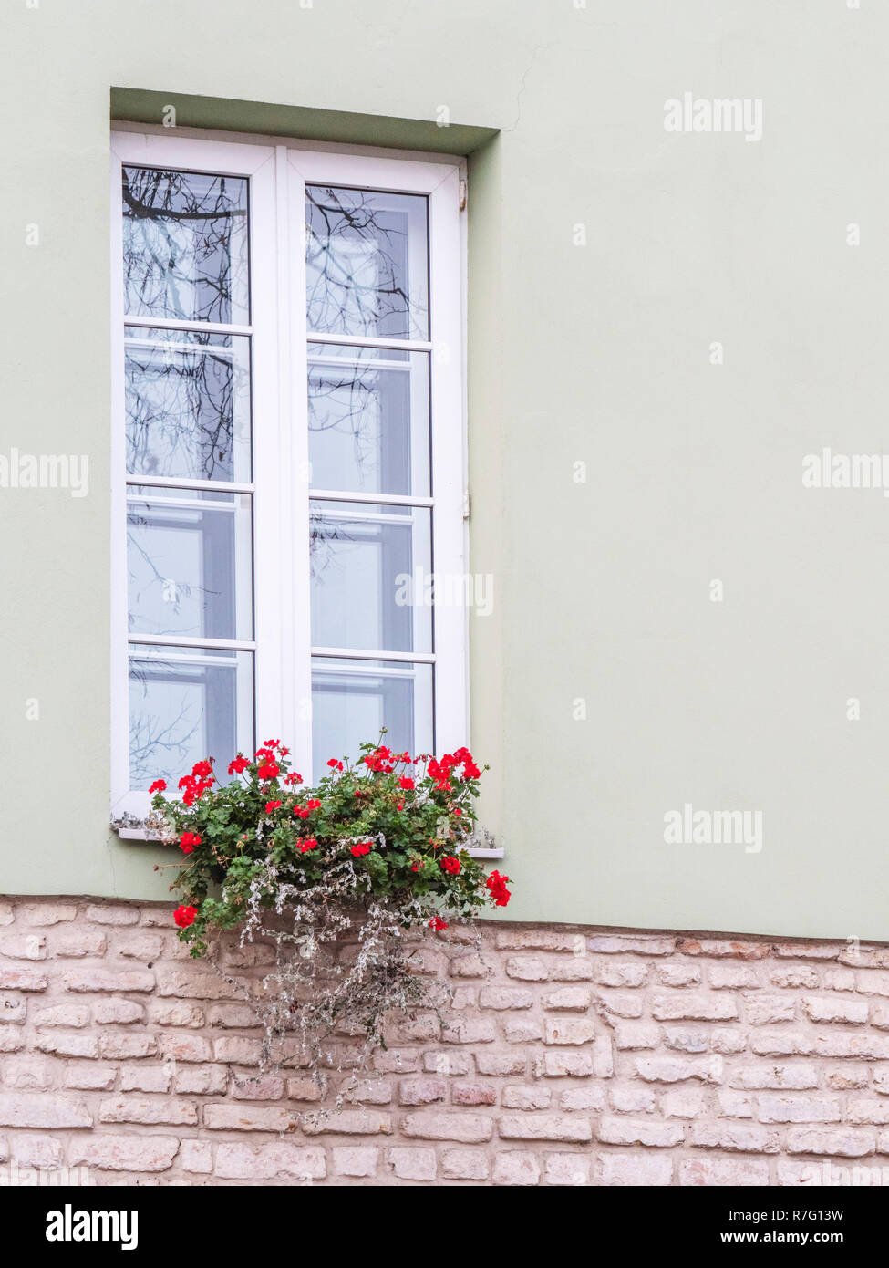 Typical european window with flowers. Flower box below a windows on an apartment building. - Stock Image