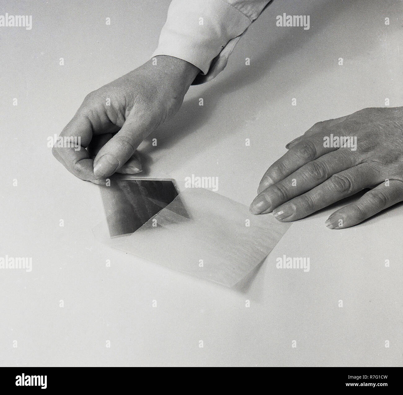1950s, film photography, putting a photographic film negative in its own individual paper wallet - Stock Image