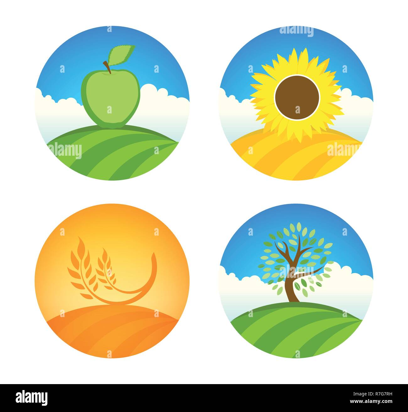 Vector logotypes with apple, sunflower and wheat nature farm harvest on colorful round illustration isolated on white. - Stock Vector