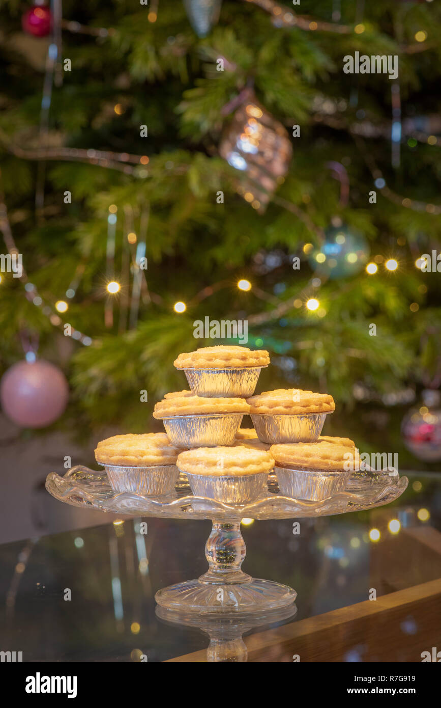 Platter of mince pies in silver foil wrappers in fron of Christmas tree - Stock Image