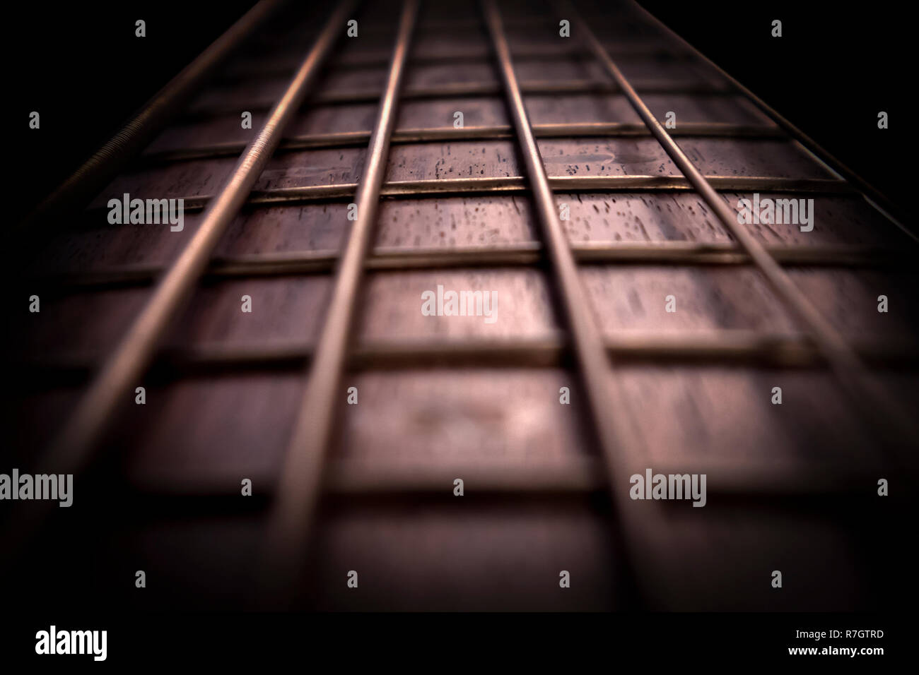 Rosewood bass guitar fret board and strings with backlight closeup Stock Photo