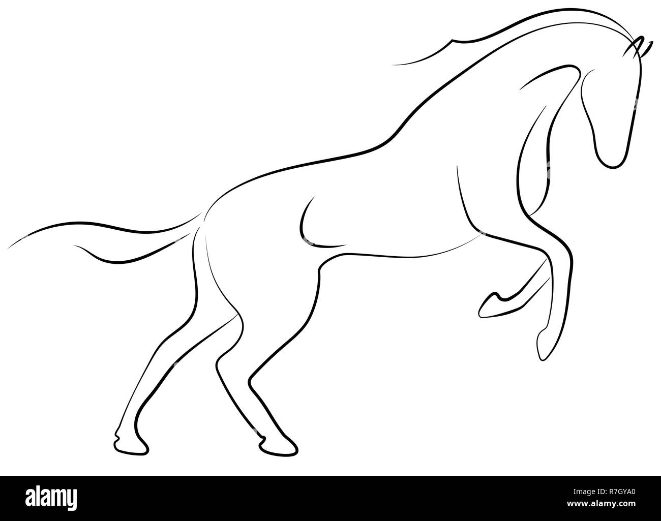 Horse Sketch Black And White Stock Photos Images Alamy