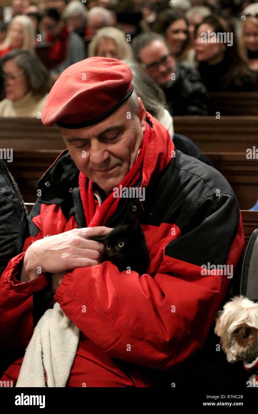 December 9, 2018 - New York City, New York, US - The 7th. annual 'Blessing of the Animals'' ceremony was held at Christ Church on Park Avenue on 9 December 2018. The blessing includes a procession of animals to the altar. The event offers individual blessings to all kinds of pets, including dogs, bunnies, guinea pigs, farm animals and more. All animals are welcomed and must be accompanied by their owners. The event is organized by Cindy Adams, a columnist at the New York Post, and Christ Church. Pictured is Guardian Angels founder CURTIS SILWA and his pet cat. (Credit Image: © G. Ronald Lop - Stock Image