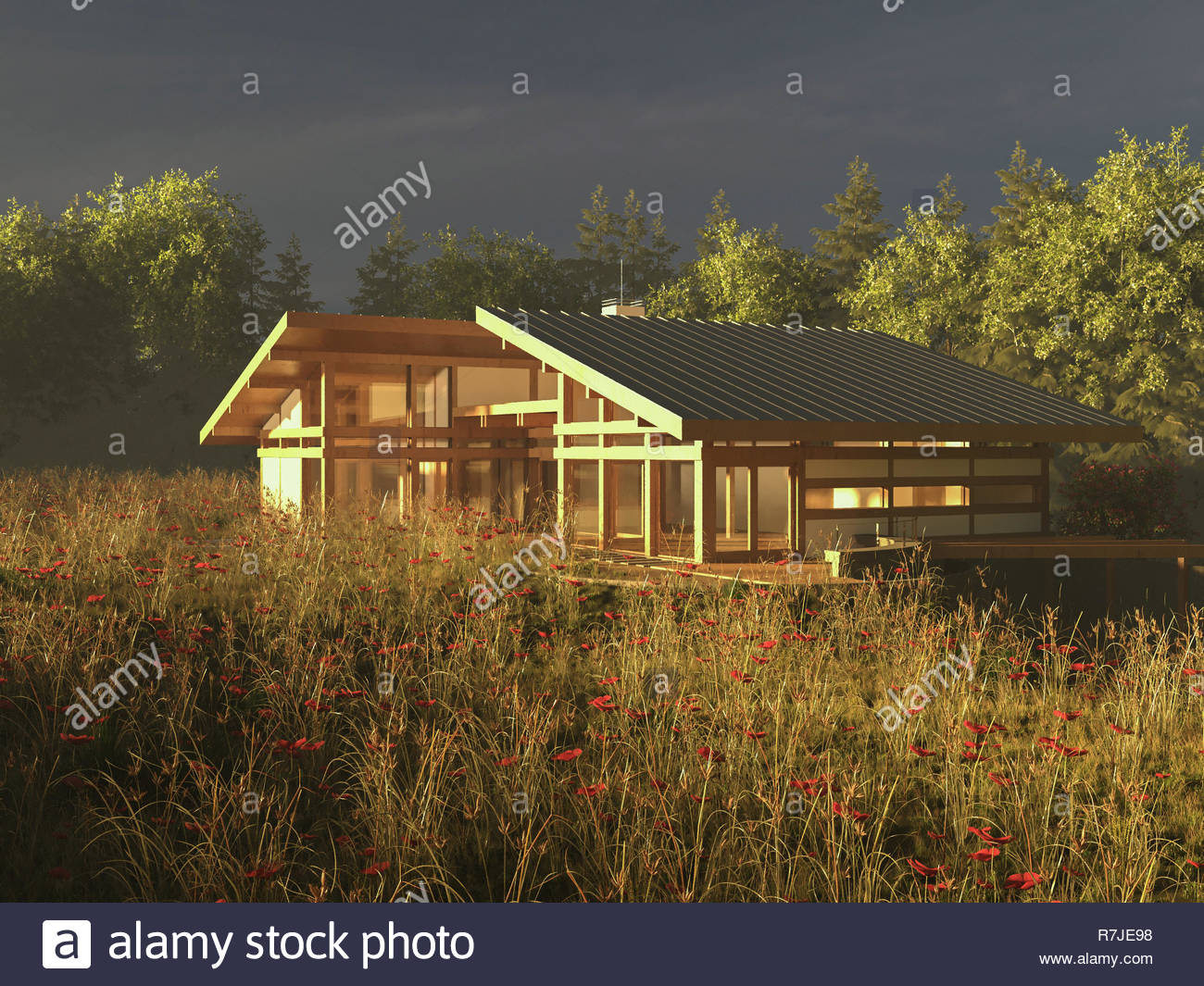 Modern house design exterior render image - Stock Image