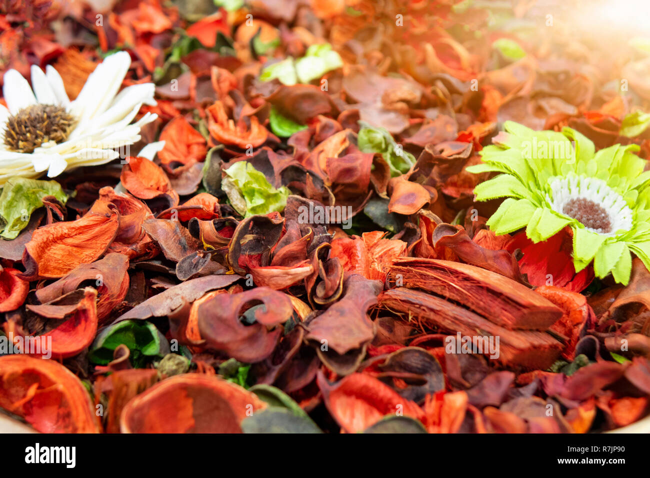 Multicolored dried flowers, used for soaps and perfumes as well as coloring, dyes and as an ingredient in foods Stock Photo